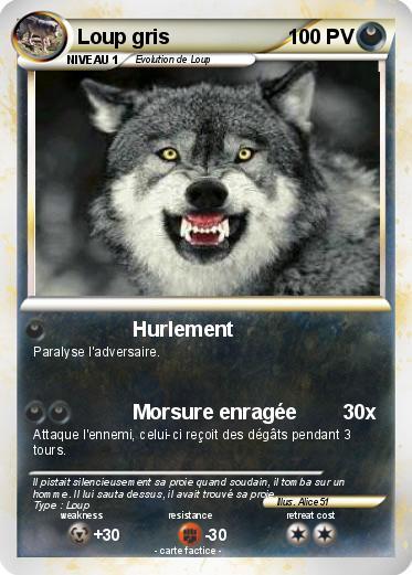 quand hurlent les loups