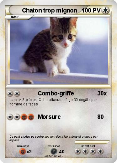 pokemon chaton trop mignon - Dessin De Chaton Trop Mignon 2