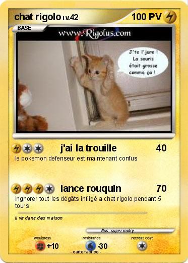 Pok mon chat rigolo 6 6 j 39 ai la trouille ma carte pok mon - Photo de chaton rigolo ...