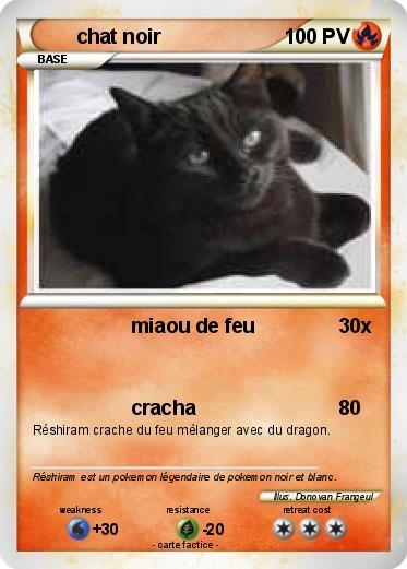 Pok mon chat noir 11 11 miaou de feu ma carte pok mon - Pierre feu pokemon noir ...