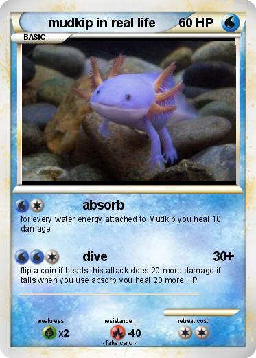 Pokémon Mudkip In Real Life Absorb My Pokemon Card
