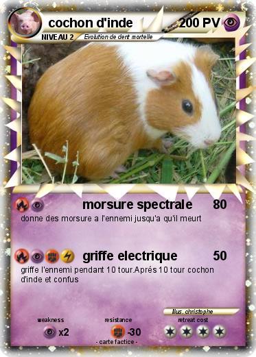 Pok mon cochon d inde 24 24 morsure spectrale ma carte - Cochon pokemon ...