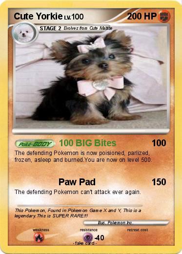 Pokémon Cute Yorkie 100 Big Bites My Pokemon Card