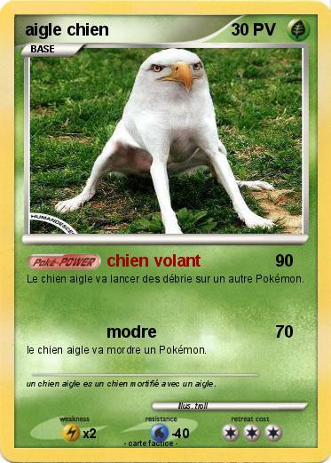 Chien Volant pokémon aigle chien - chien volant - ma carte pokémon
