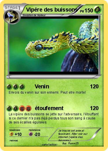 Pok mon vipere des buissons venin ma carte pok mon - Dessin de vipere ...