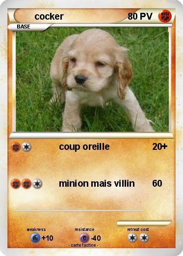 Coloriage De Chien Cocker Anglais.Pokemon Cocker Coup Oreille Ma Carte Pokemon