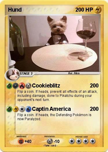 Pokemon Hund
