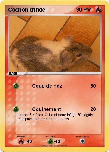 Pok mon cochon d inde coup de nez ma carte pok mon - Cochon pokemon ...