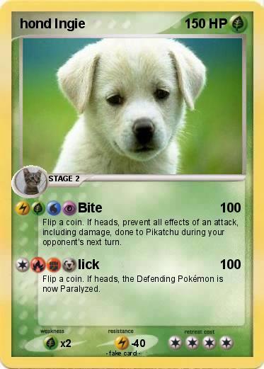 Pokemon Hond Ingie