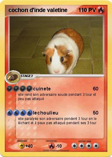 Pok mon cochon d inde valetine cuinete ma carte pok mon - Cochon pokemon ...