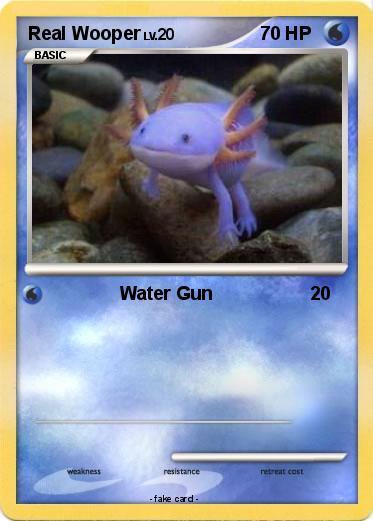 Pokémon Real Woop...