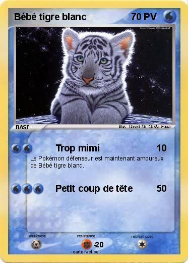 Pok mon bebe tigre blanc 7 7 trop mimi ma carte pok mon - Photo de tigre blanc a imprimer ...