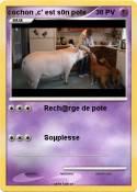 cochon ,c' est