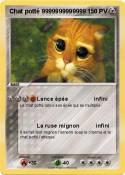 Chat potté