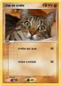 chat de crotte