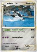 wailord 50