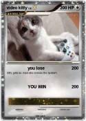 video kitty