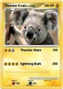 Thunder Koala