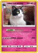 kitten but
