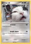 sneezy cat