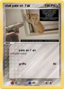 chat pate en