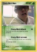 Crazy Bird Man
