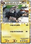 chat chien et