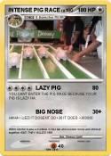 INTENSE PIG