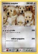 nonstop puppies