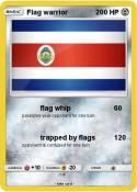 Flag warrior