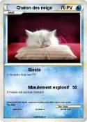 Chaton des