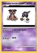 rottweiler-border