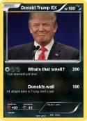 Donald Trump EX
