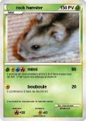 rock hamster