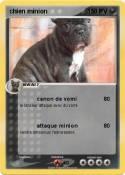 chien minion