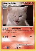 kitten the
