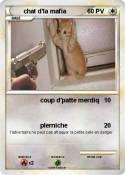 chat d'la mafia