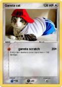 Gansta cat