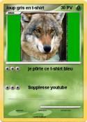 loup gris en