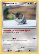mignon chat
