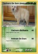 Cachorro De
