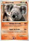 Dieux Koala