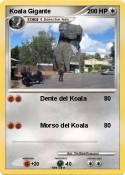 Koala Gigante