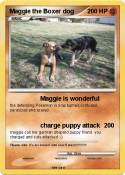 Maggie the
