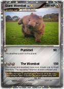 Giant Wombat