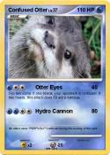Confused Otter
