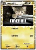 ninga kitty