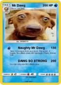 Mr Dawg