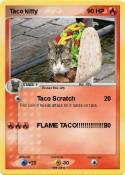Taco kitty