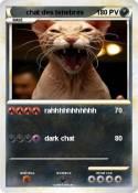 chat des